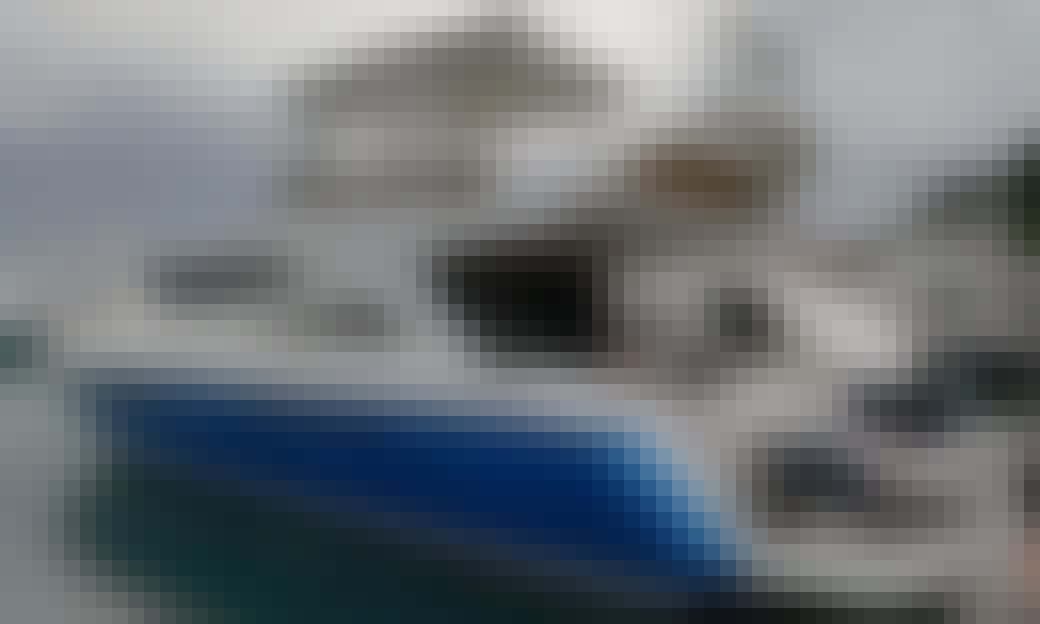 Viking 62 Yacht