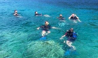 Diving Adventure in Budva, Budva Municipality