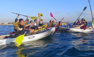 Discover Dead Sea! 2-3 Hours Kayak Tour for up to 20 Person