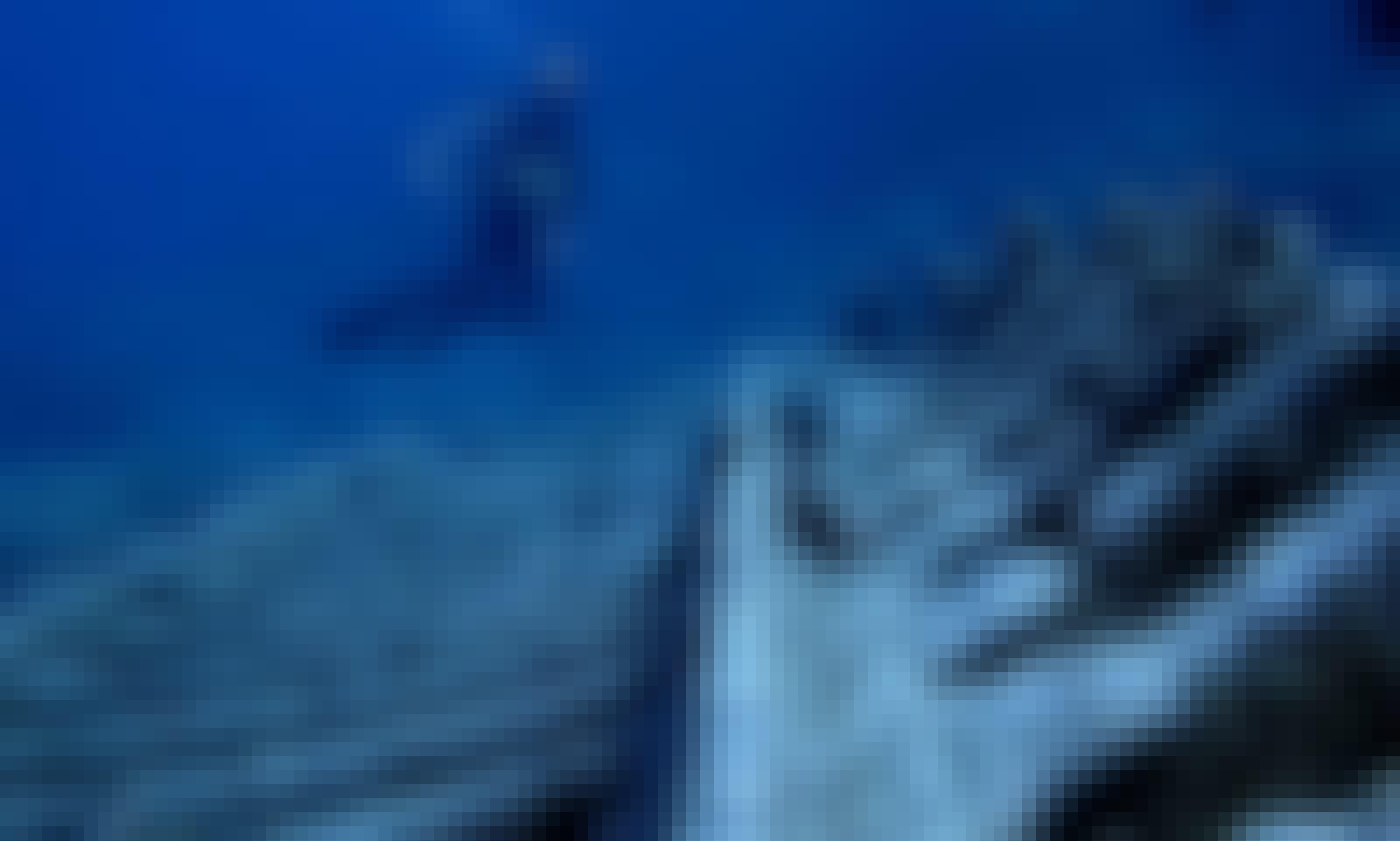 Book the Open Water Diver in Marina da Quinta Grande, Madeira