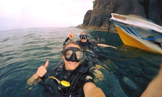 Watch and swim the largest mammals on earth! Whale, Dolphin and Snorkeling Trip in Trincomalee, Sri Lanka!