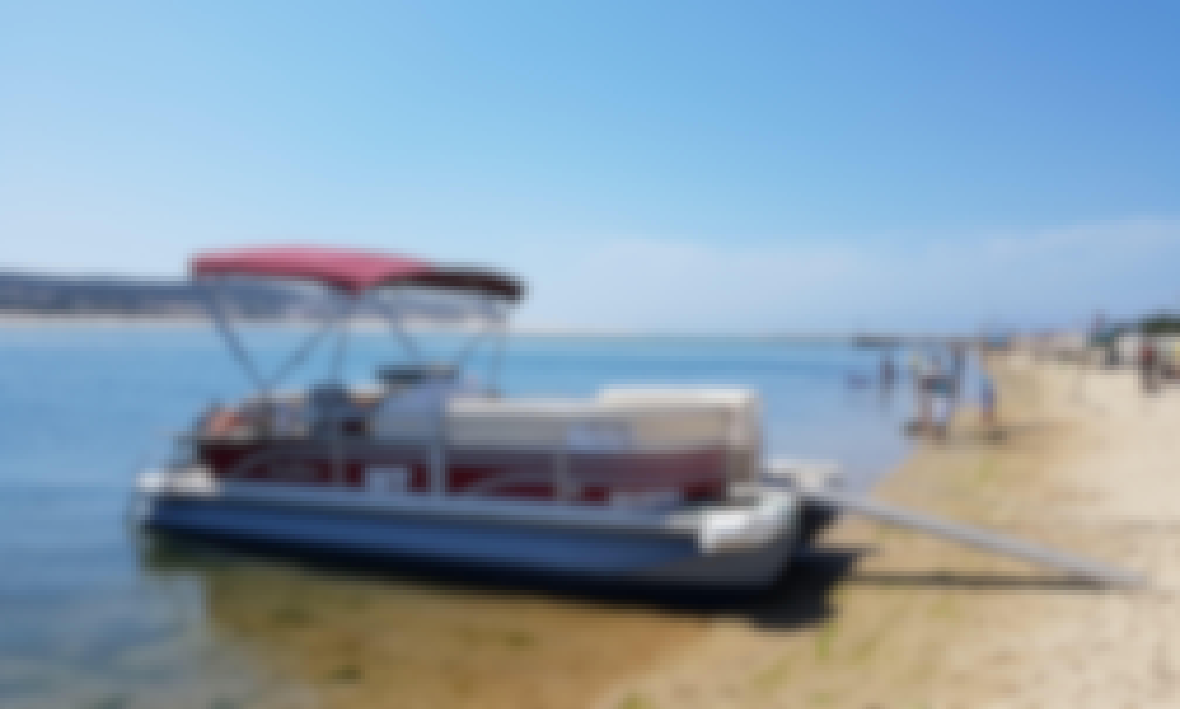 Boat tours in a Comfortable Pontoon - Obidos Lagoon. Lagoa de Óbidos, Portugal