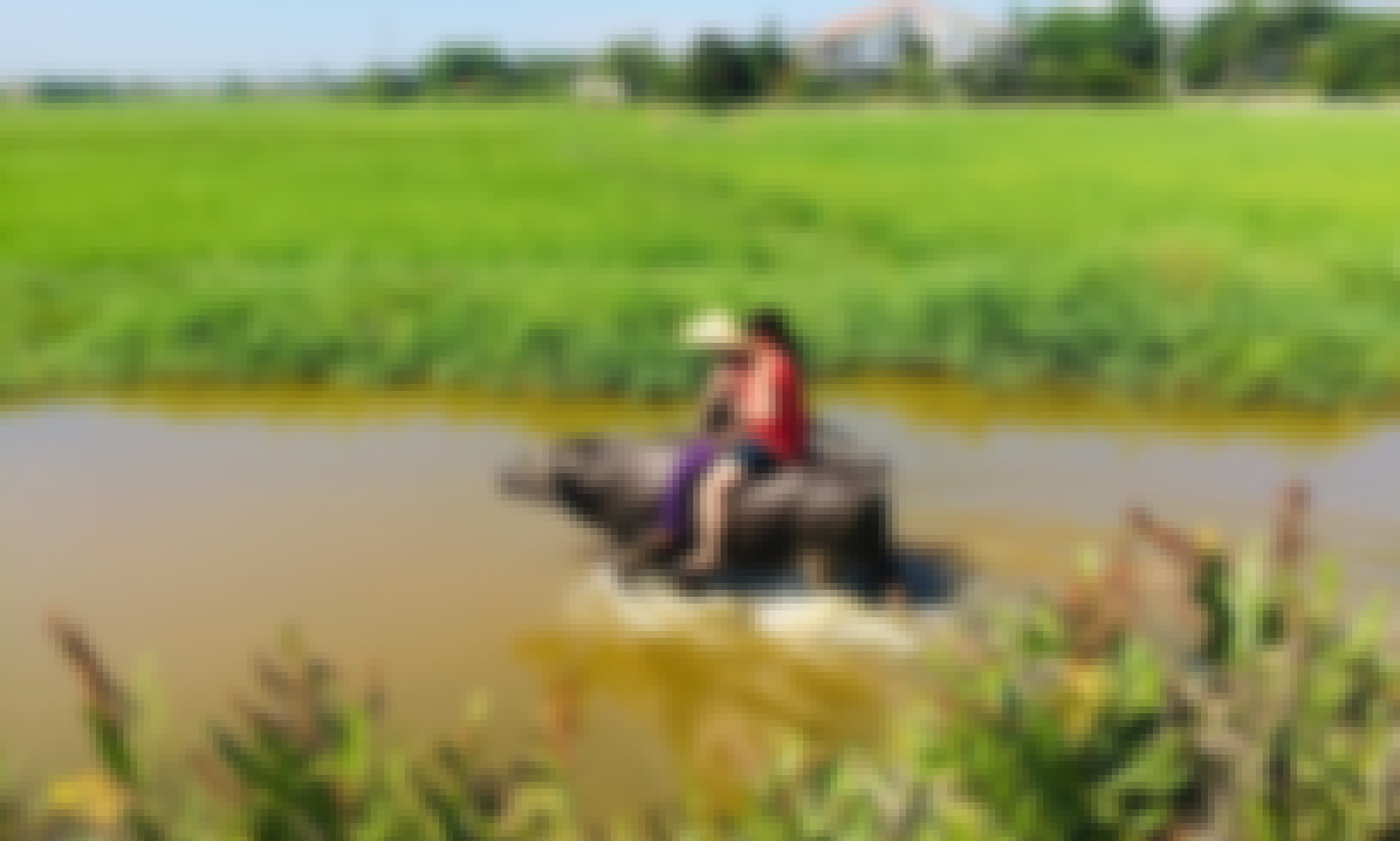 Water Buffalo and Basket Boat for Rent in Hoi An, Vietnam