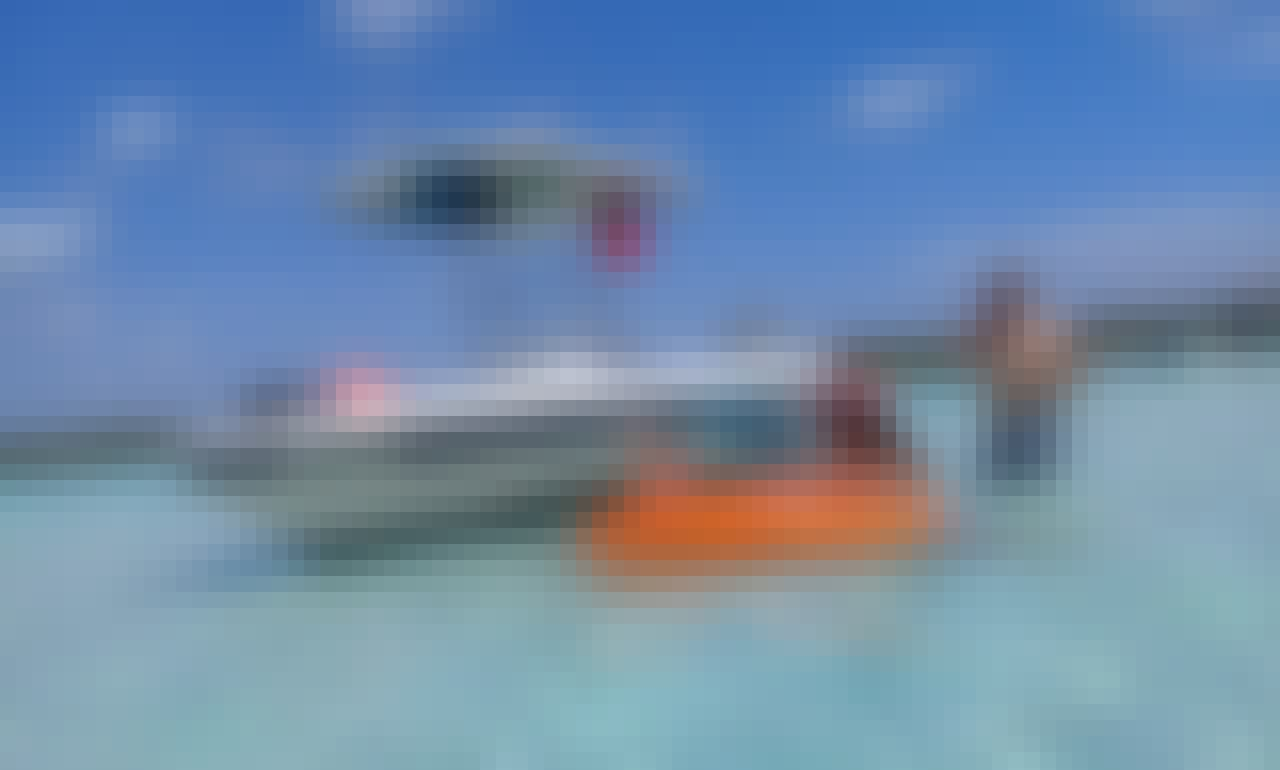 Private 3 Reef Snorkeling Trip in San Miguel de Cozumel, Mexico!