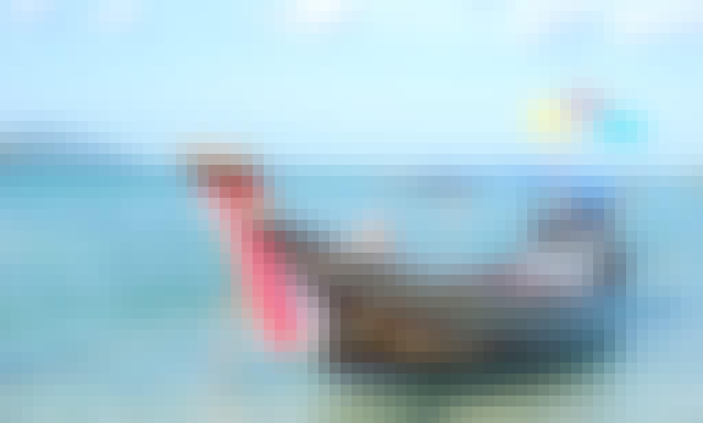 Long Tail Boat Rental in Chang Wat Surat Thani
