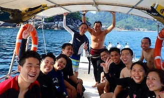 Leisure Dive Trips on Tioman Island with Highly Experienced Dive Guide