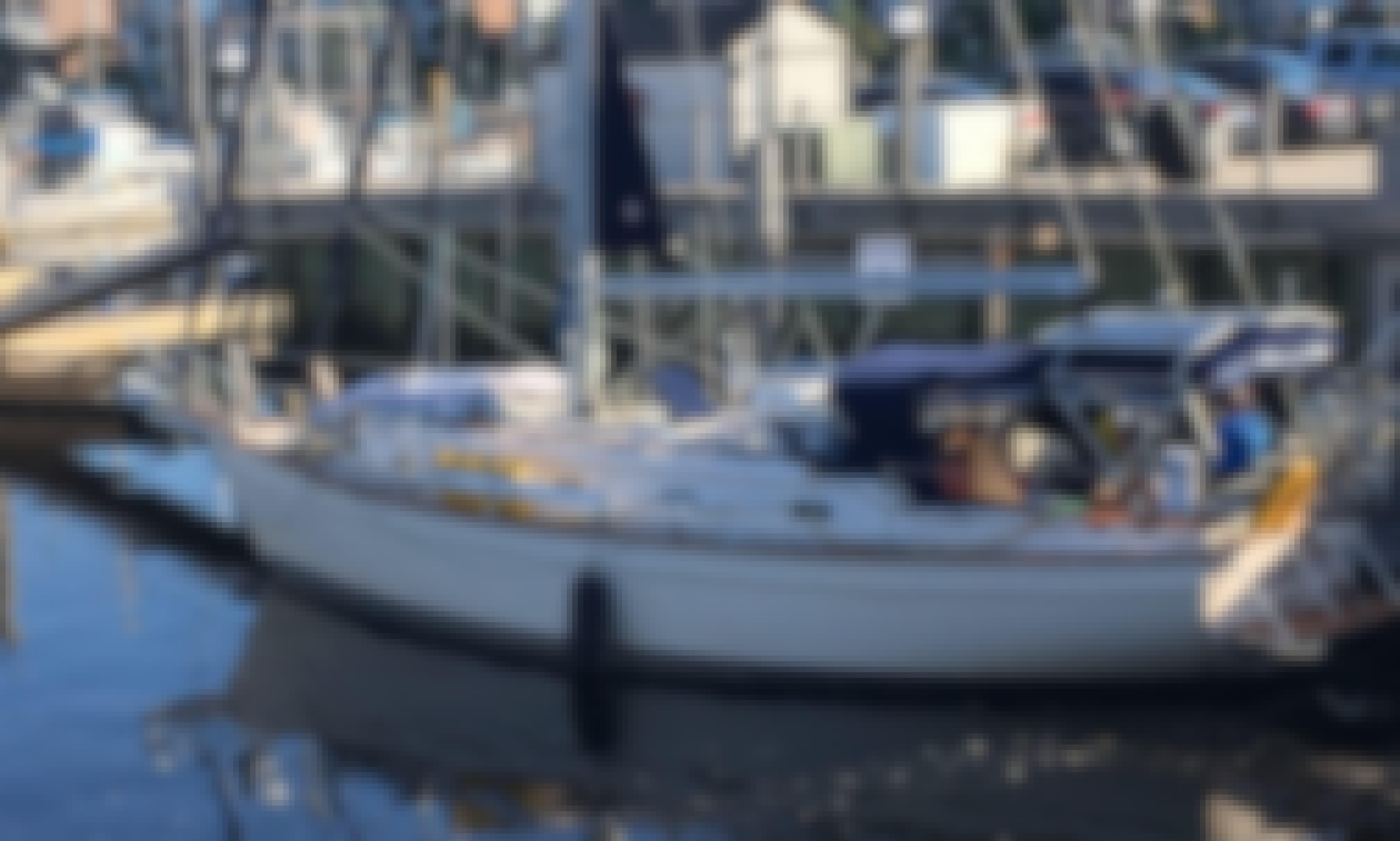 Island Packet 40 Very stable cruising sailboat. Chesapeake Bay Hampton Roads Virginia Beach Norfolk Williamsburg Yorktown