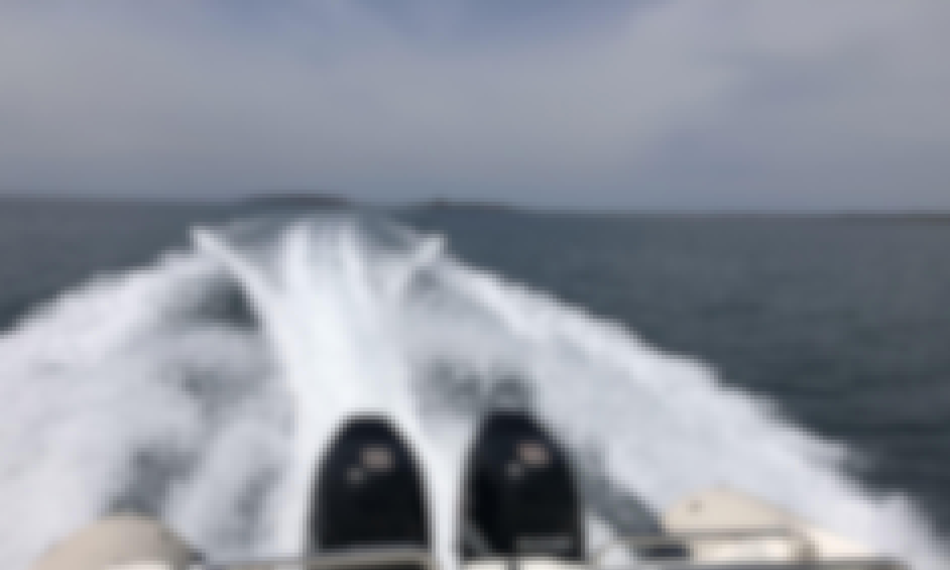 Rent the 26' Gommone Clubman RIB in Porto di Marina di Torregrande