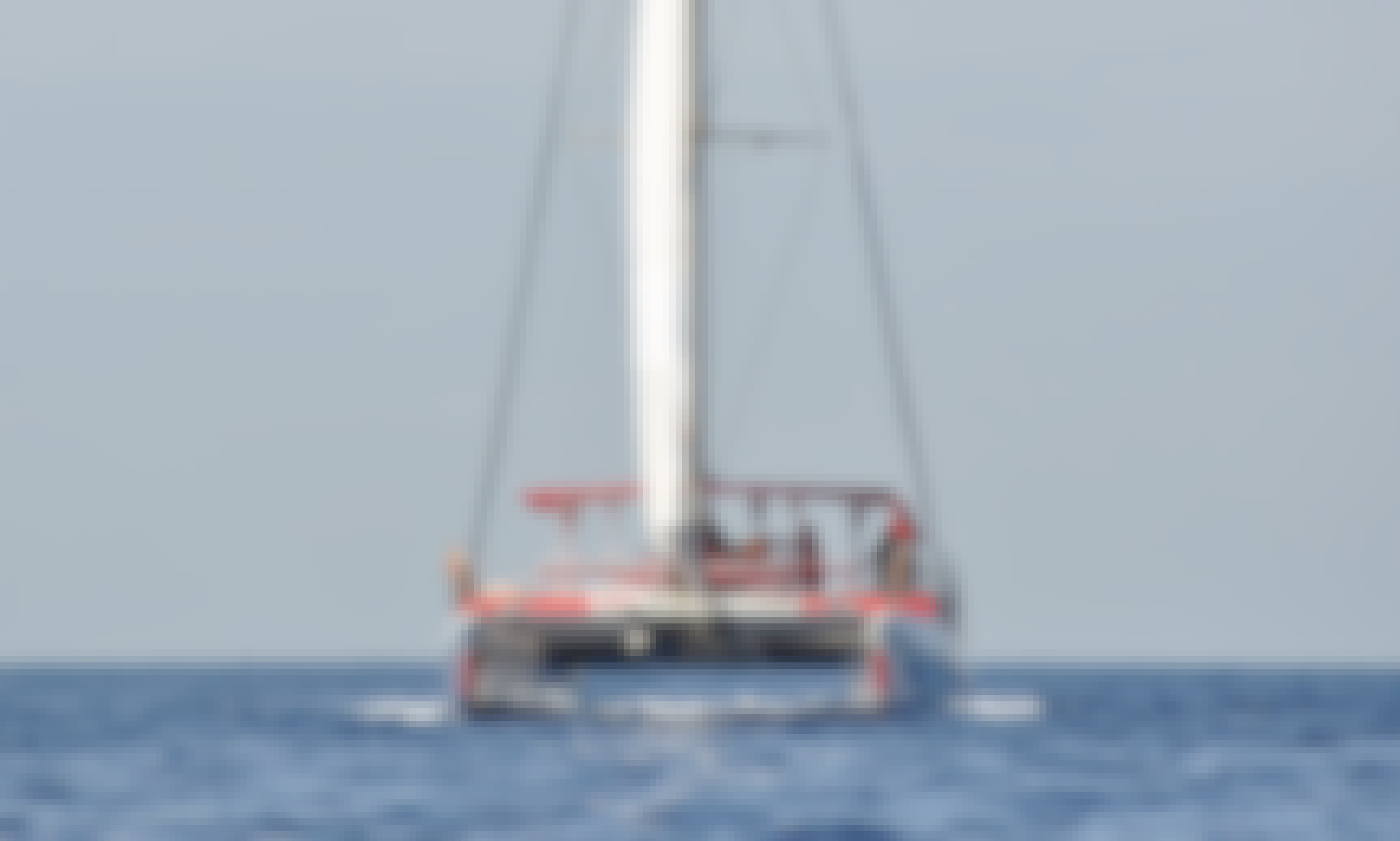 Eco catamaran to see and listen whales in Tenerife