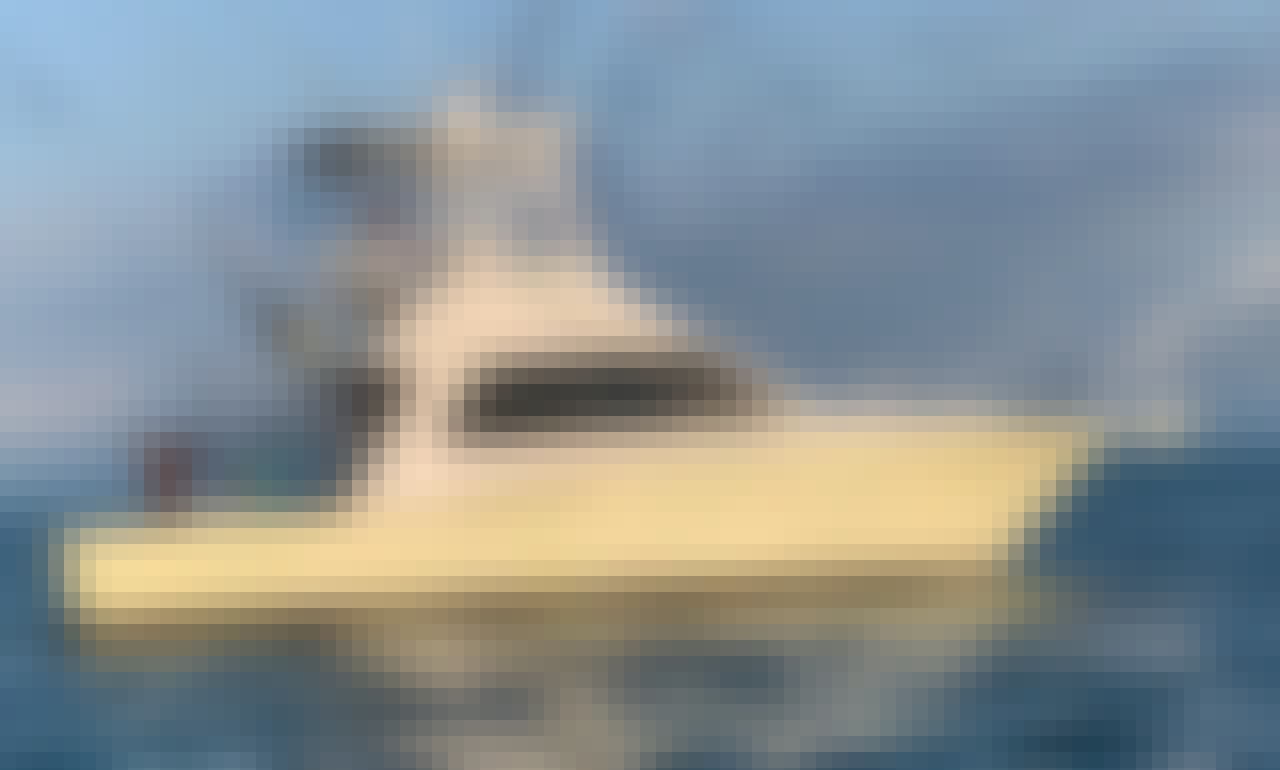 Book the Sports fisherman Yacht in Nuevo Vallarta, Nayarit