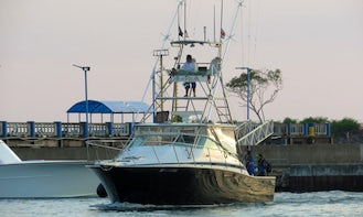 Full-Day Offshore Fishing Charter in Quepos - 38' Bertram Express Sportfisher for up to 8 people!