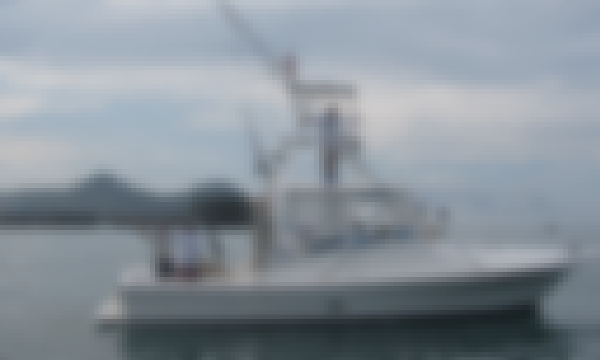 Offshore and Inshore Fishing Charter onboard 33' Dawson Fishing Boat in Quepos, Provincia de Puntarenas