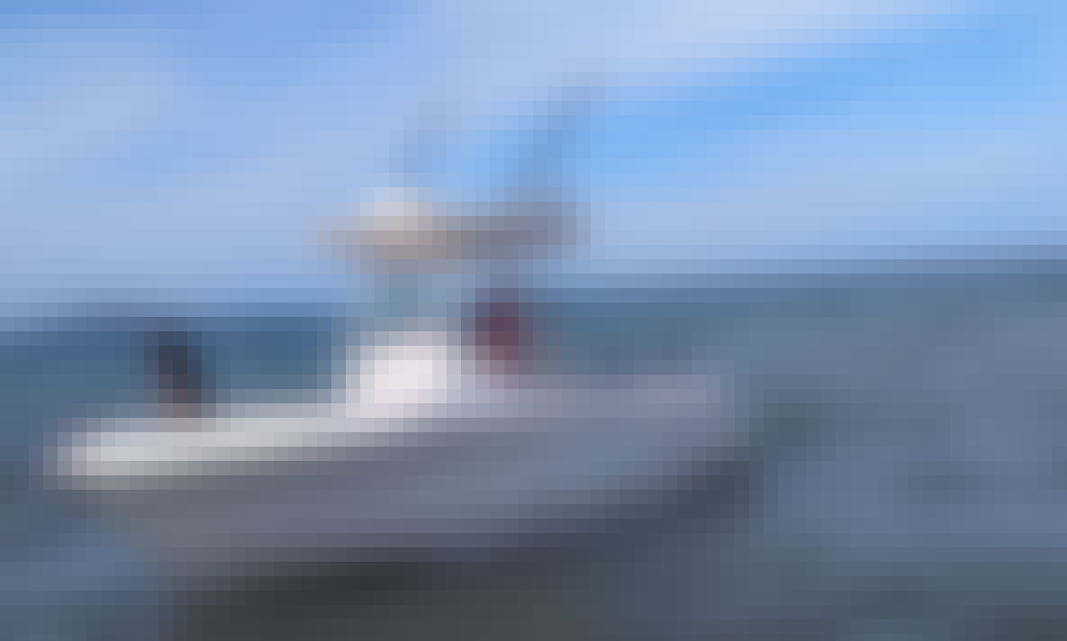 Island Tours and Sport Fishing Adventure in Loreto, Baja California Sur!