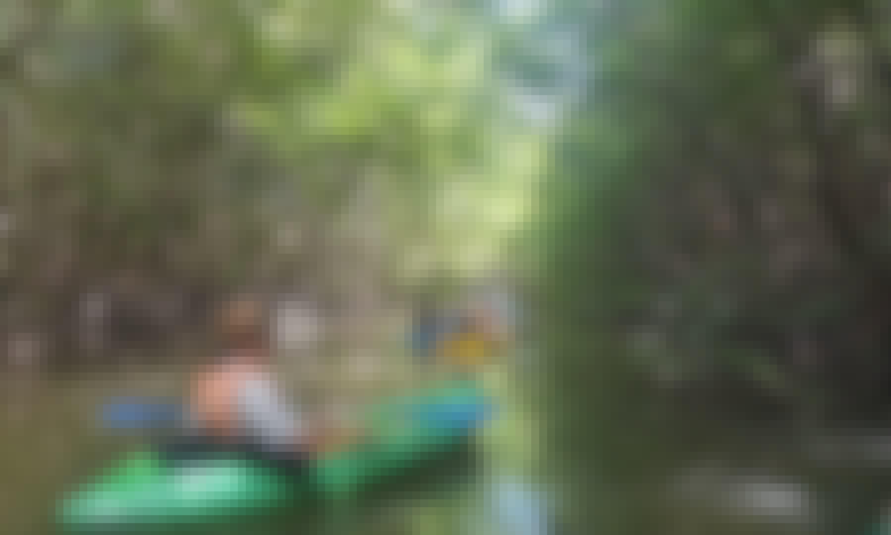 Khao Lak Mangrove Explorers - Kayaking in Khao Lak