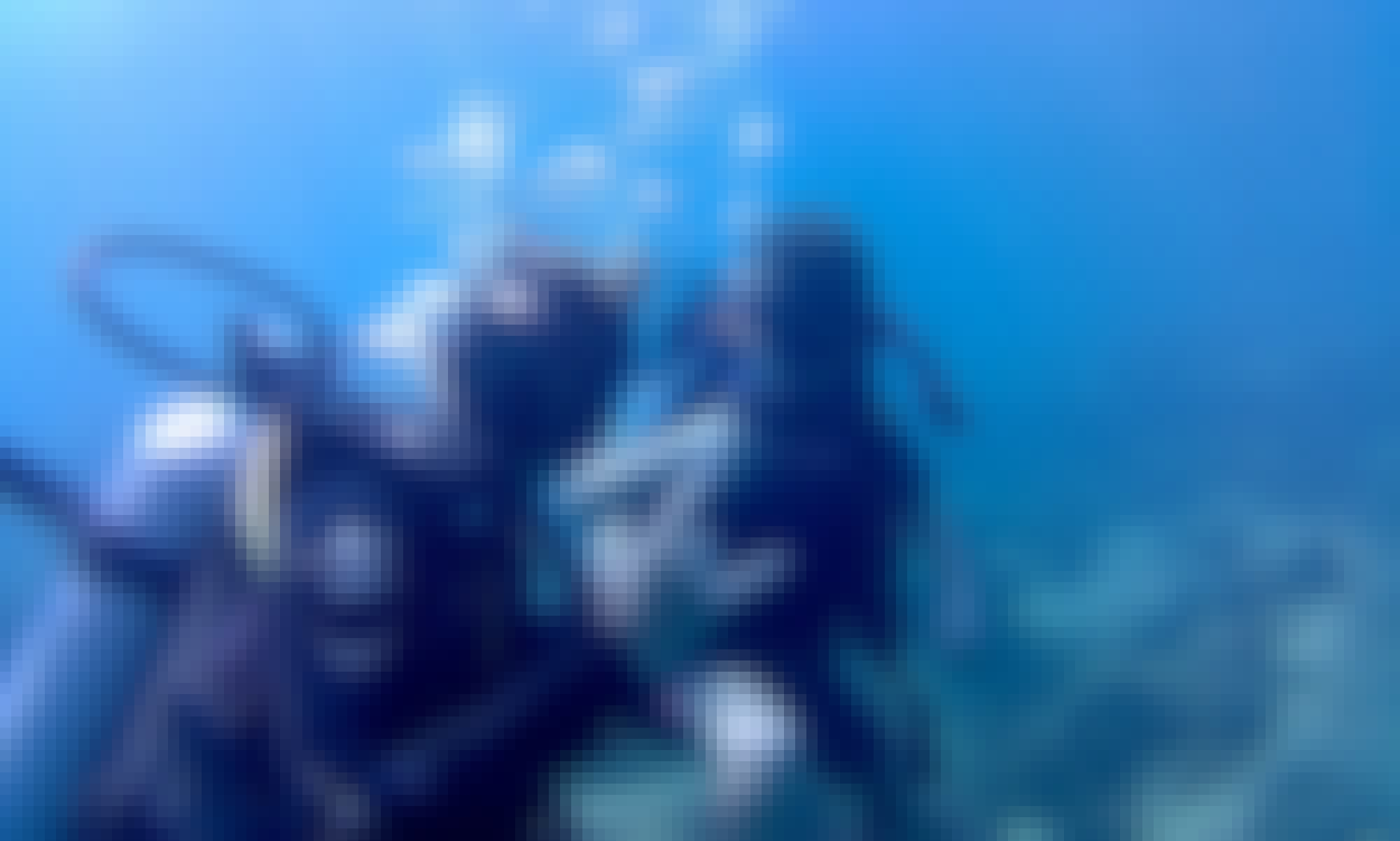 Book the Diving in  Koh Tao