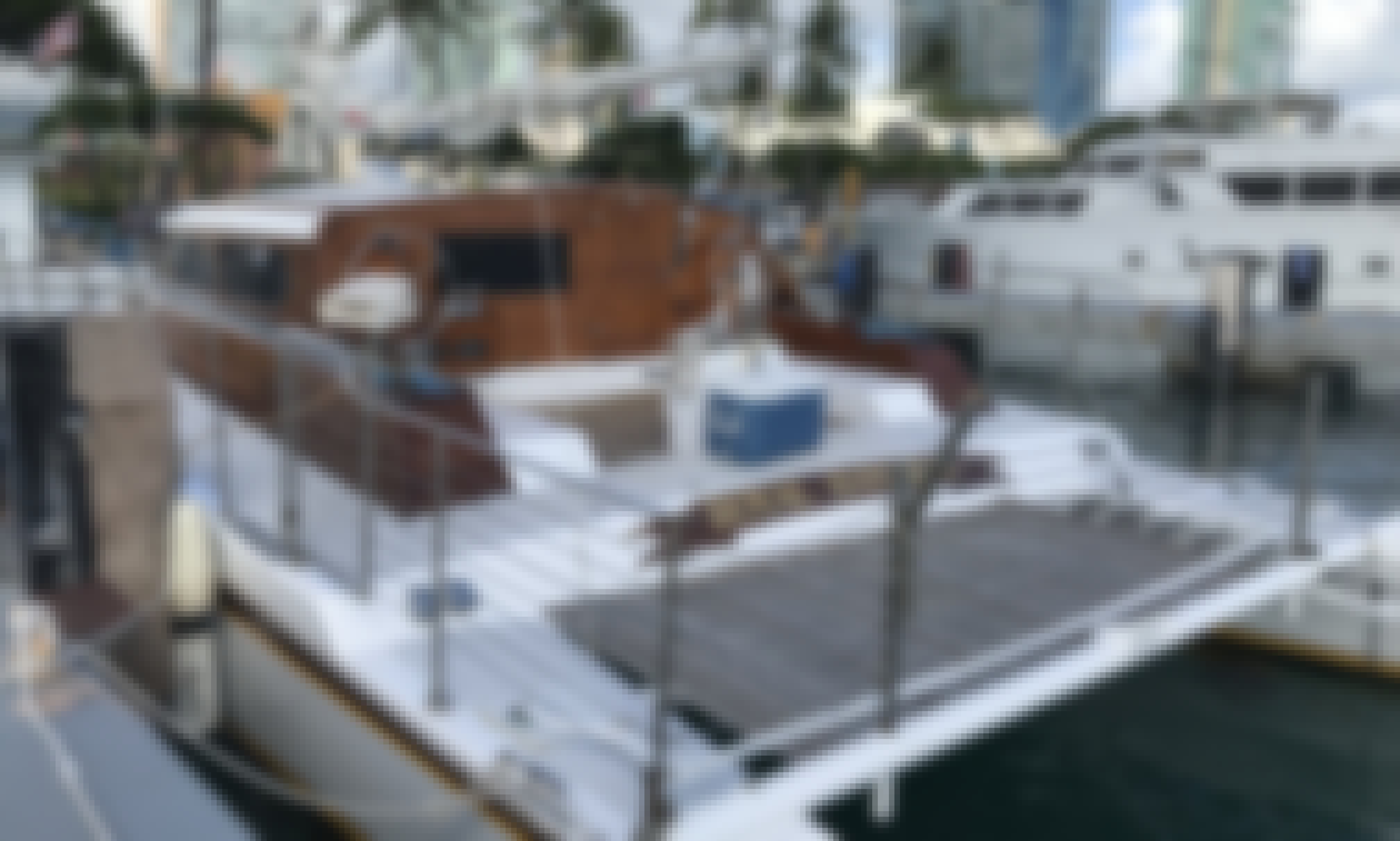 Private Catamaran Tour on Kewalo Harbor!