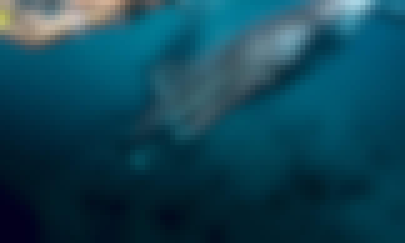 Whale Shark + Canyoneering Kawasan Falls Tour in Cebu