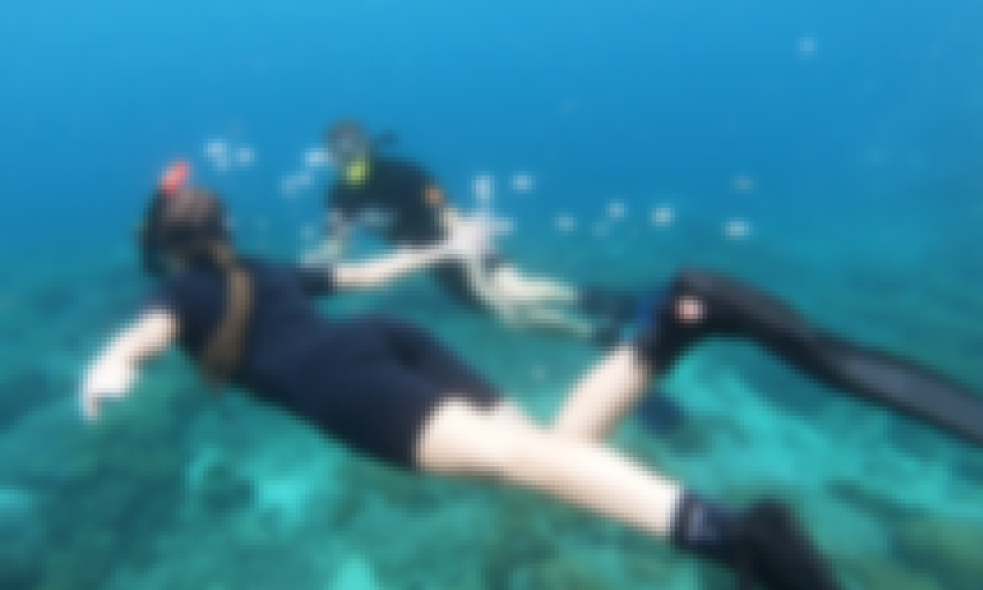 Bali - Snorkeling trip at Padang Bai with Bali Diving