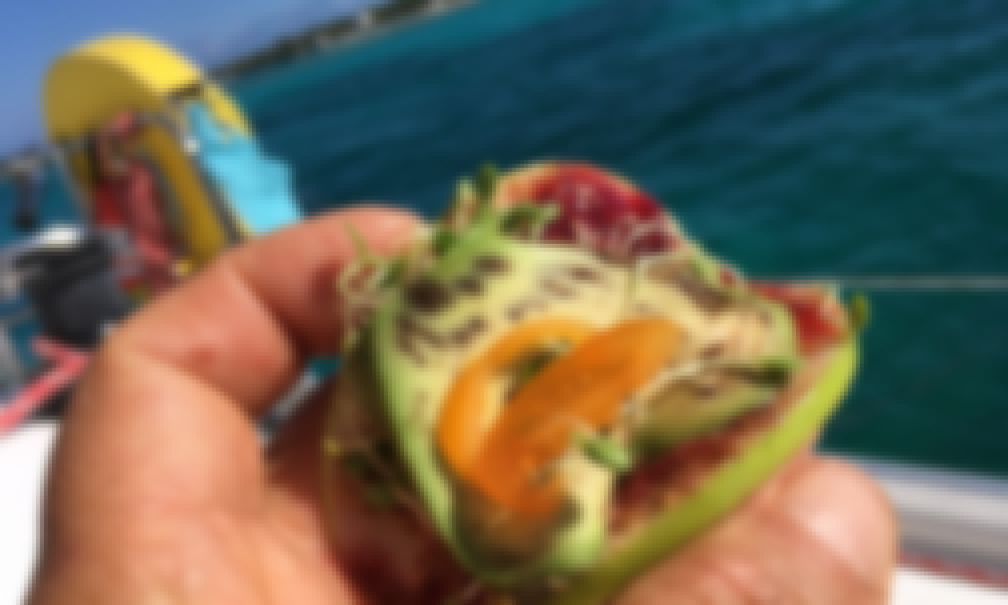 Sail to the Bahamas from Fort Lauderdale Plant-Based Charter