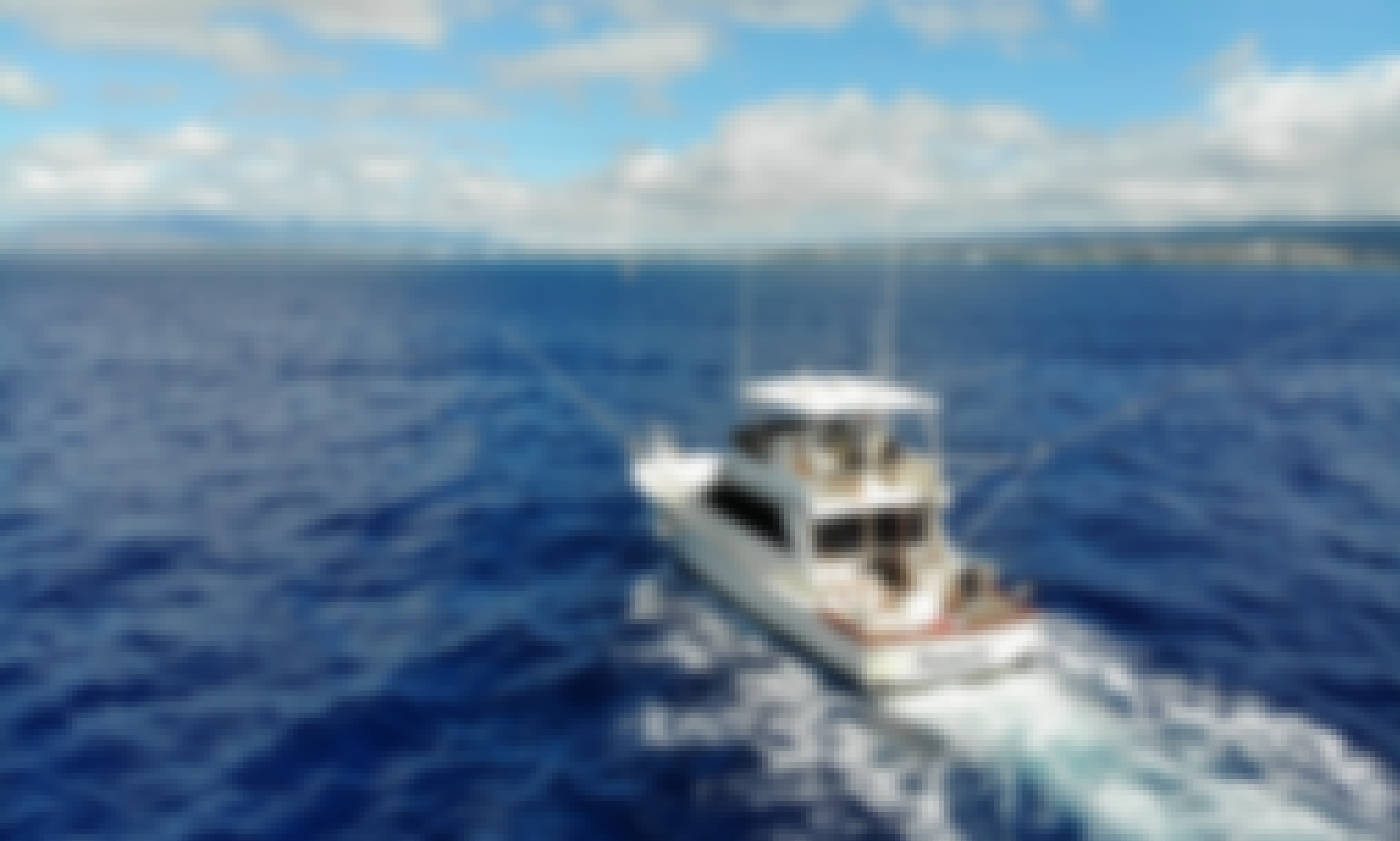 Sandy's Sportfishing, Sunset Tours, and Snorkeling