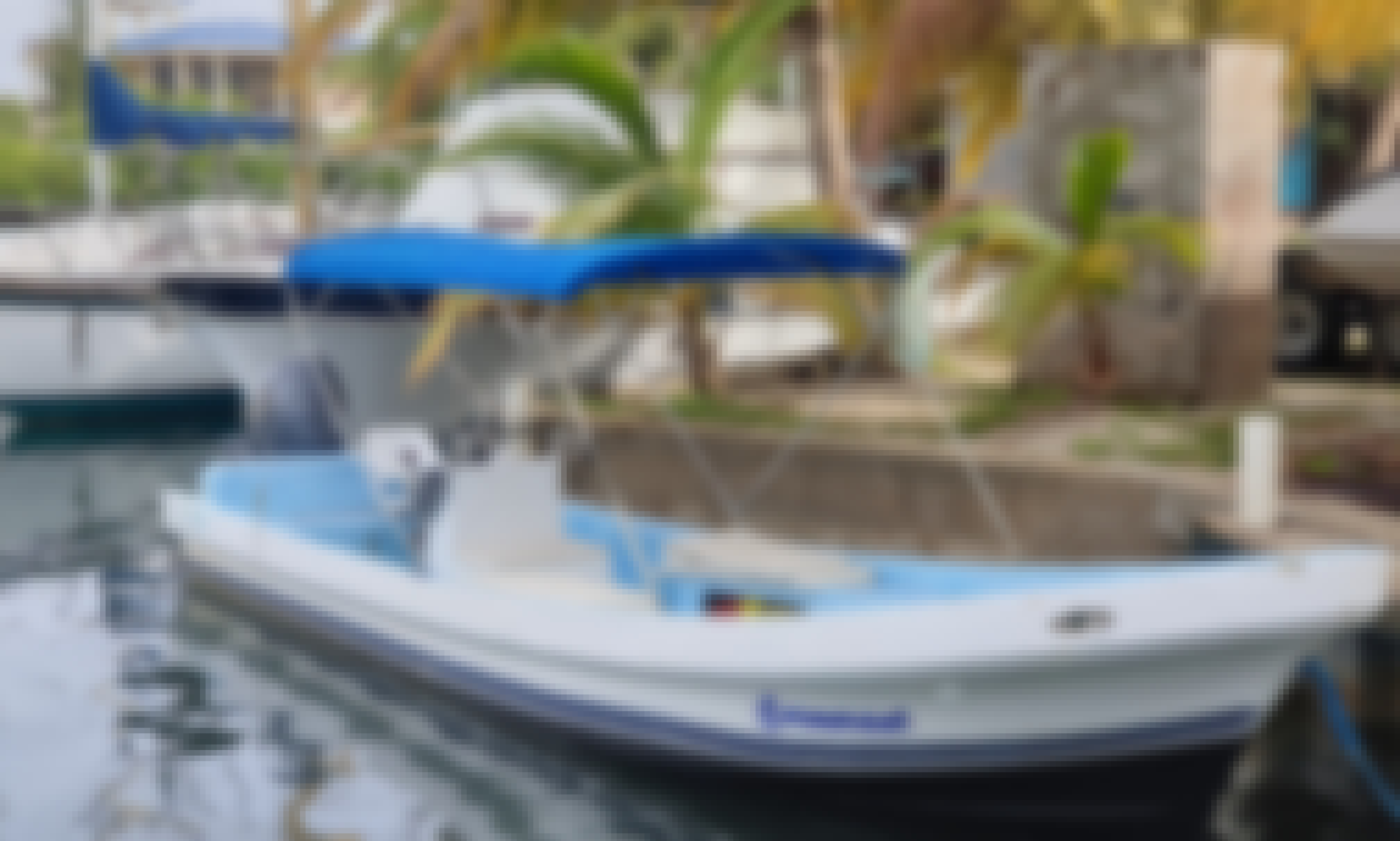 Power Boat Tour for 20 People in Placencia, Belize