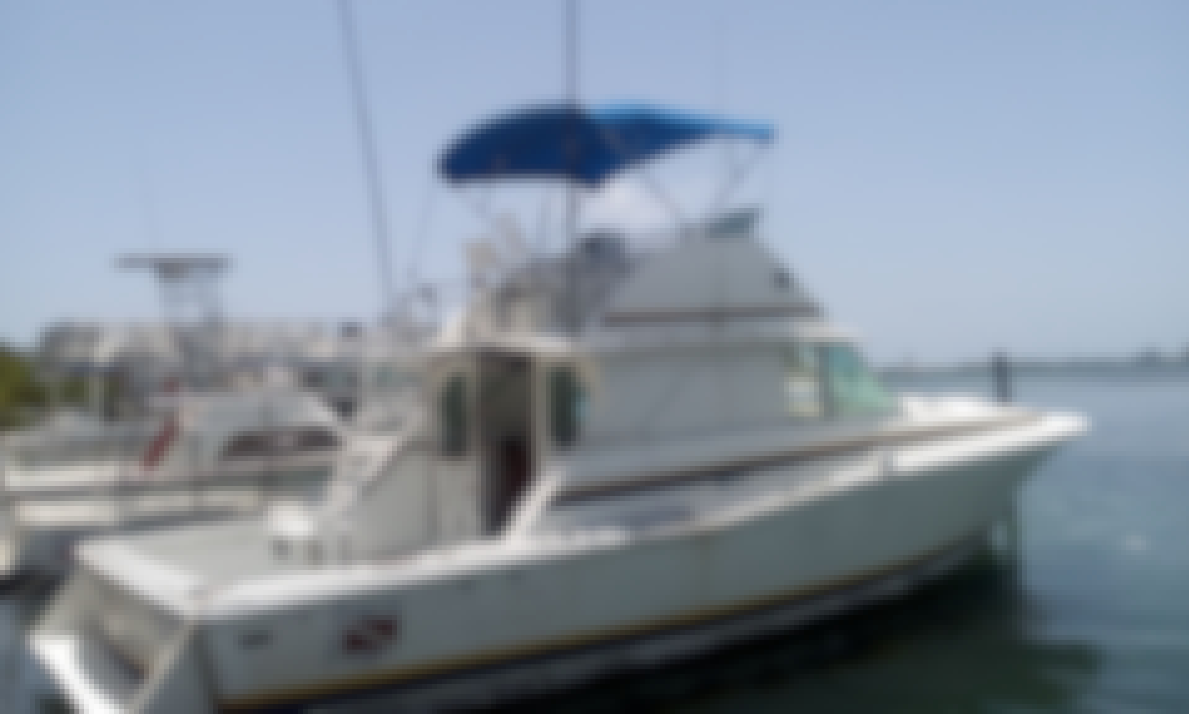 Private Fishing Charter  for 6 People With Experienced Captain in Cancún, Mexico