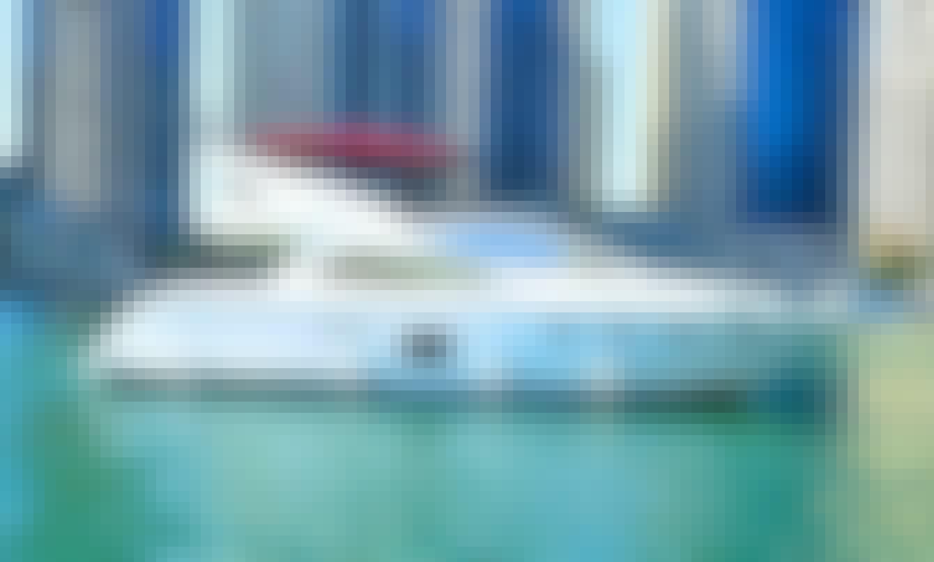 All Day Adventure! Yacht Cruise, Safari & More in Dubai, UAE