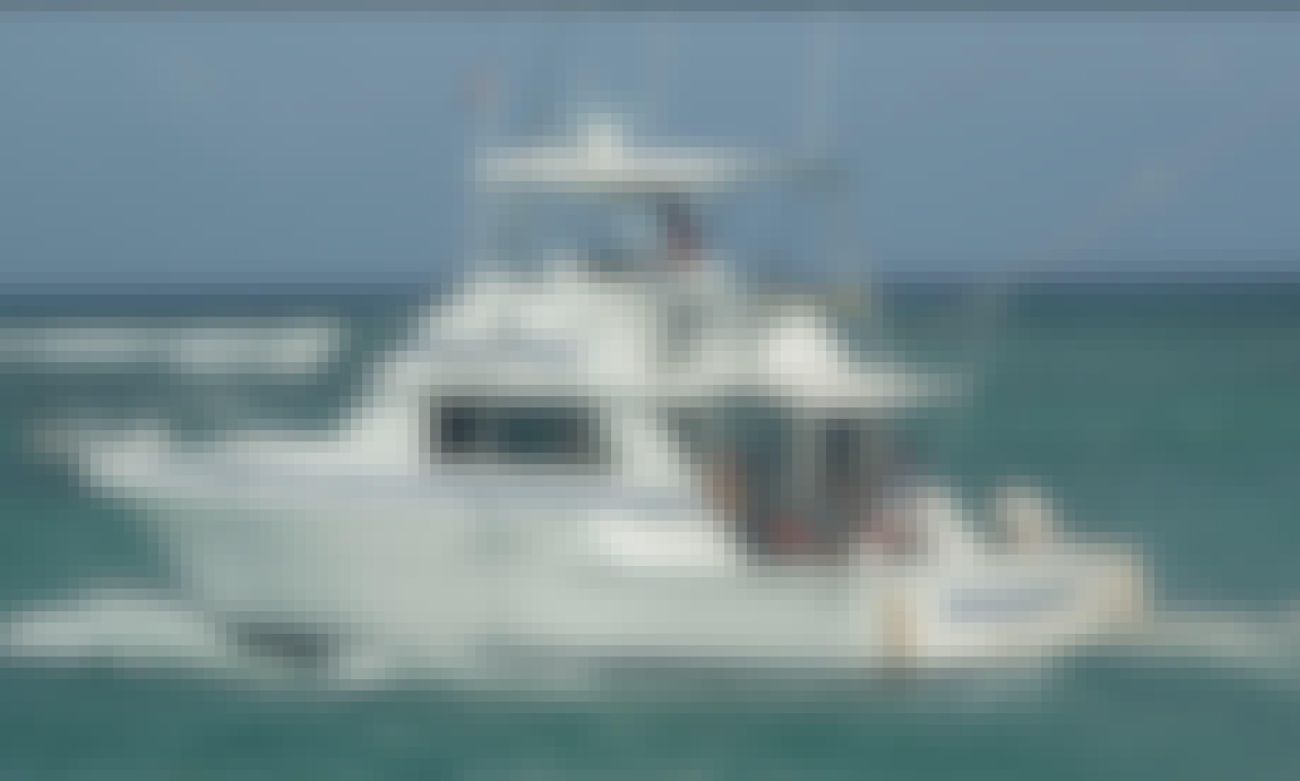 8 Hour Fishing Trip -  42' Bertram Fishing Charter in Punta Cana, La Altagracia