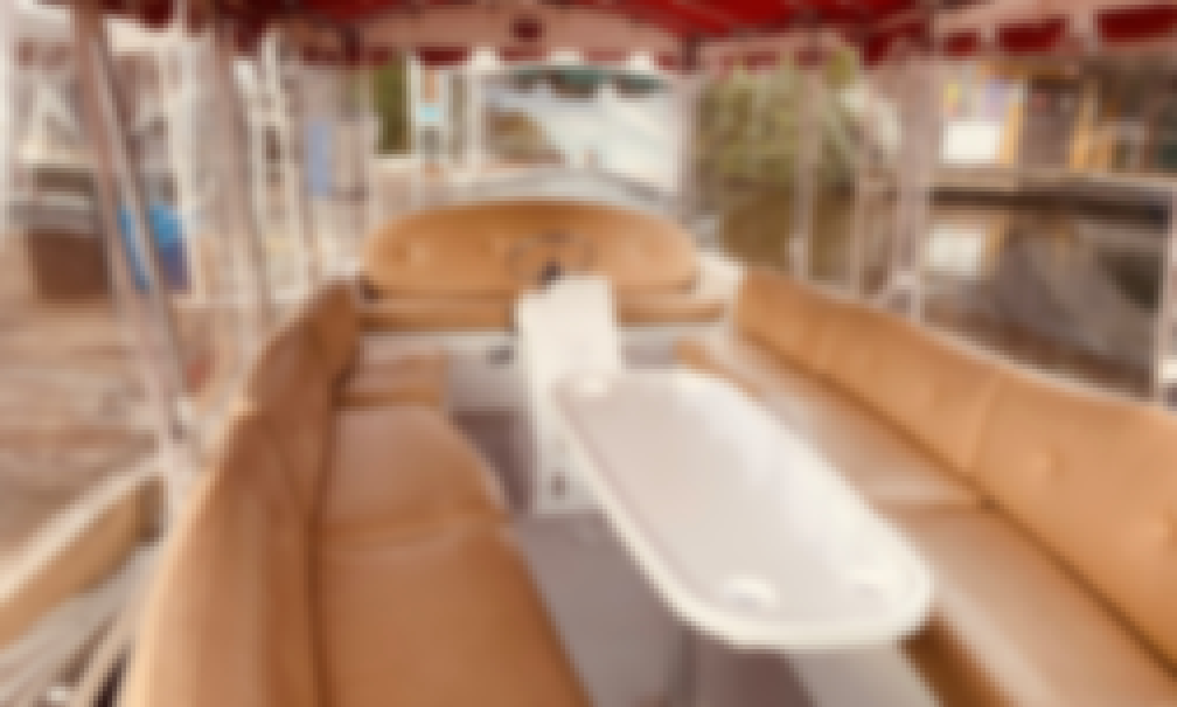 Beautiful Duffy Electric Boats for Rent in Seattle, Washington