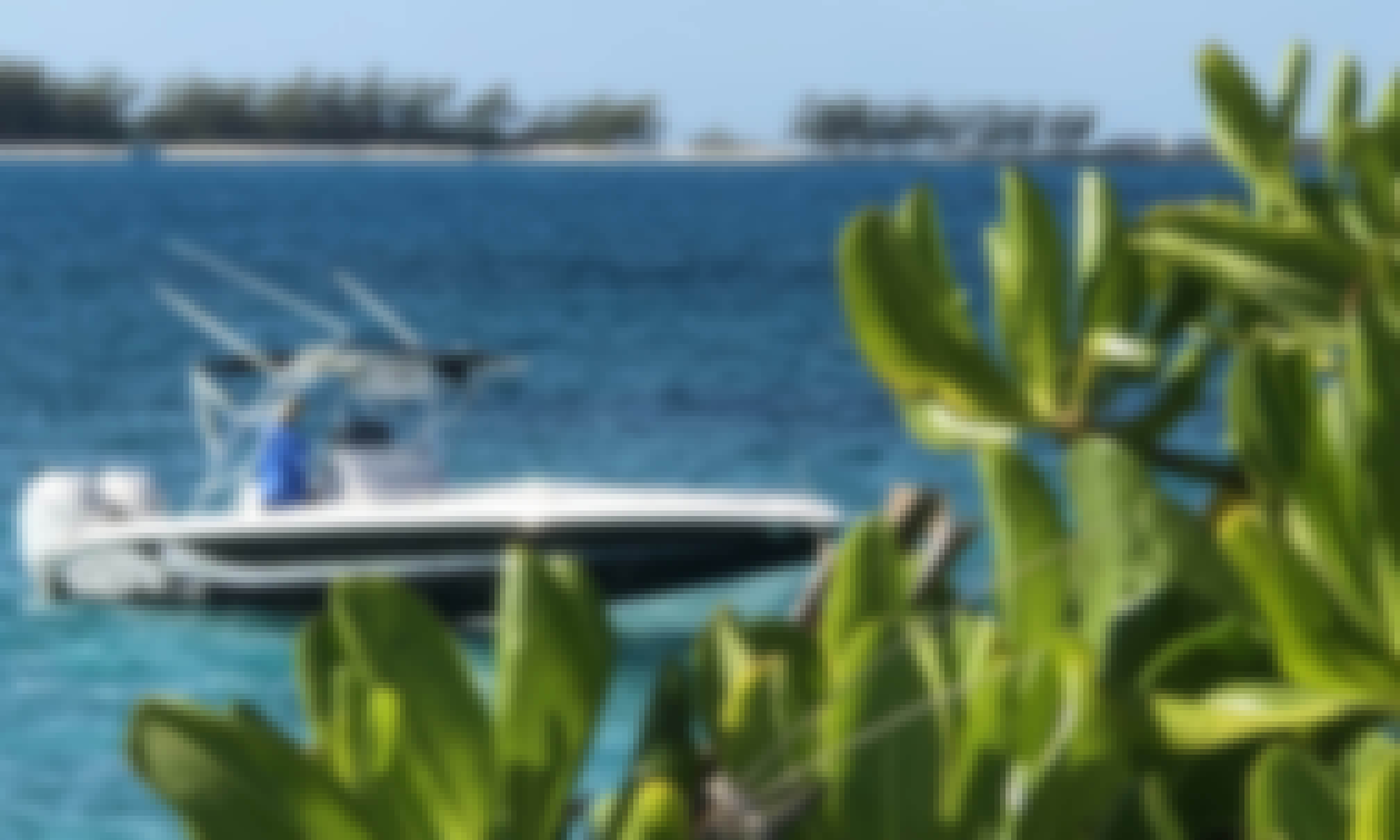 Snorkel With the Green Turtles of Green Cay Bahamas, this tour has four stops, 2 Islands & 2 Cays