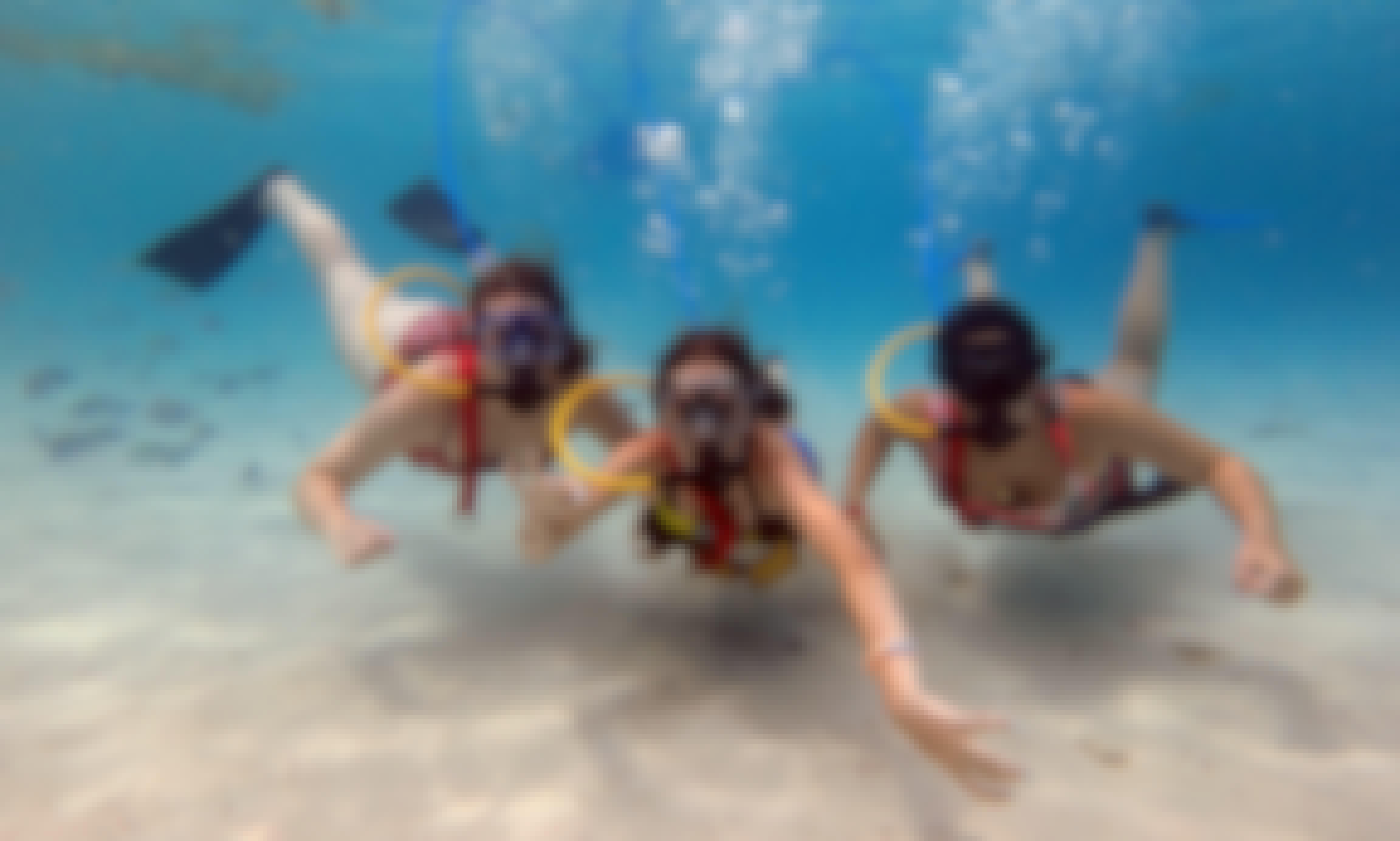 SNUBA Shore Dive with Professional Guide in St. Thomas, USVI