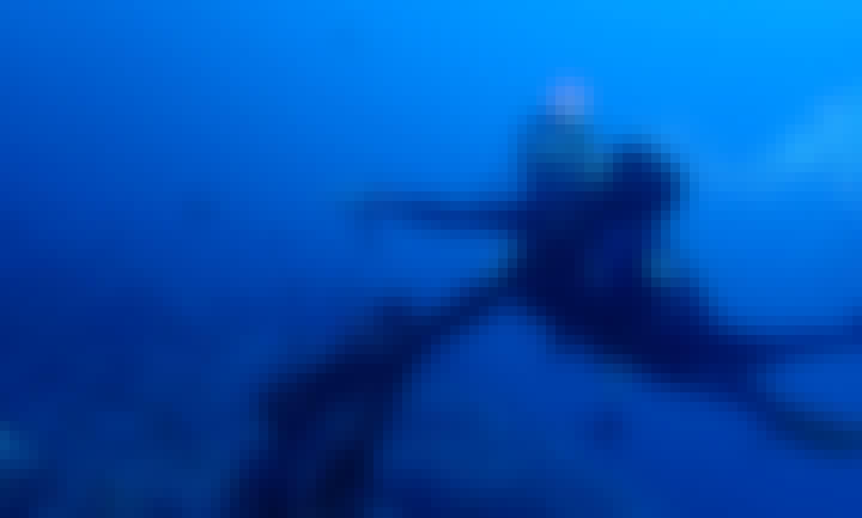 Scuba Diving with PADI Dive Instructors in Puerto Galera, Philippines!