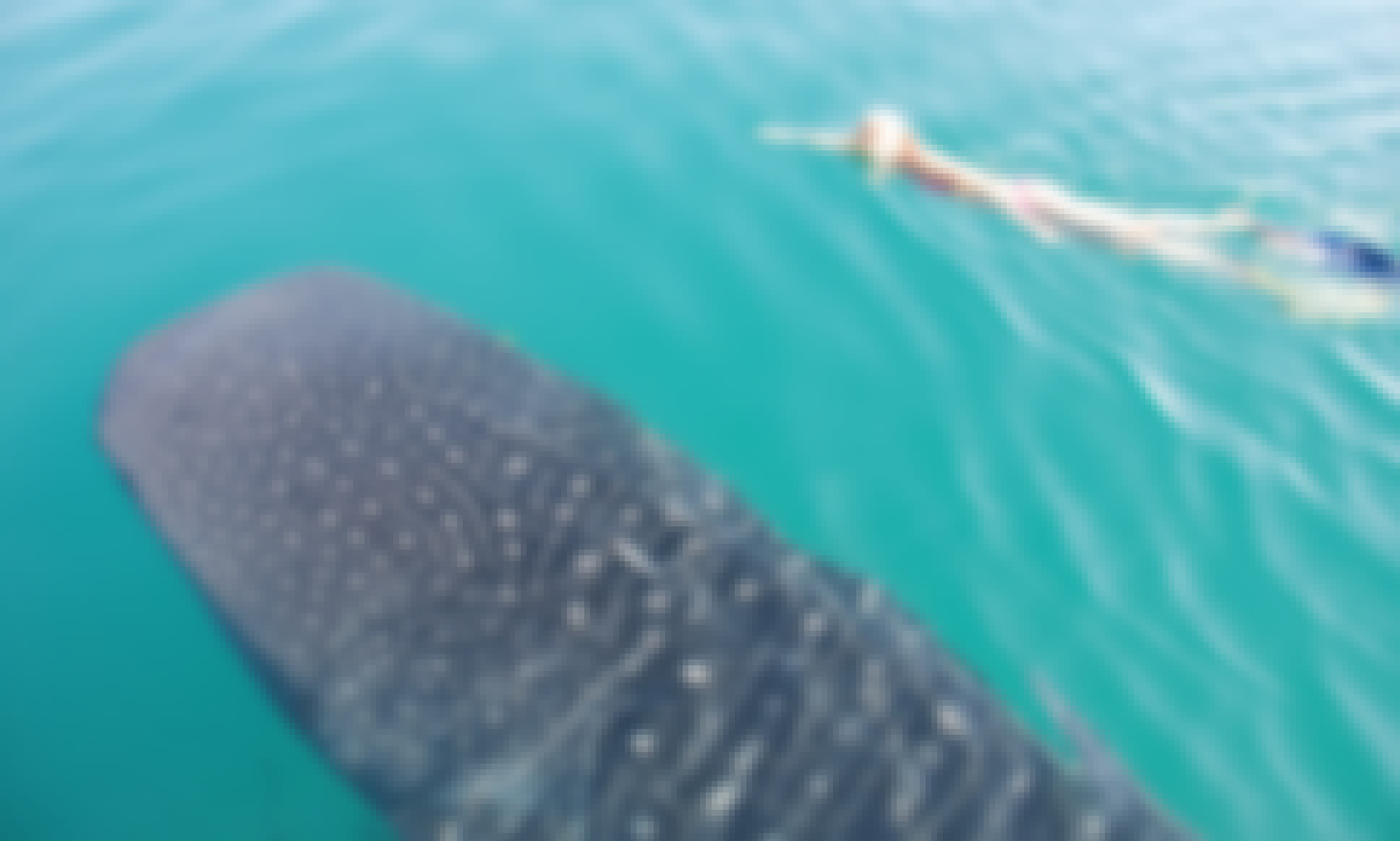 Swim With The Whale Sharks Trip in La Paz