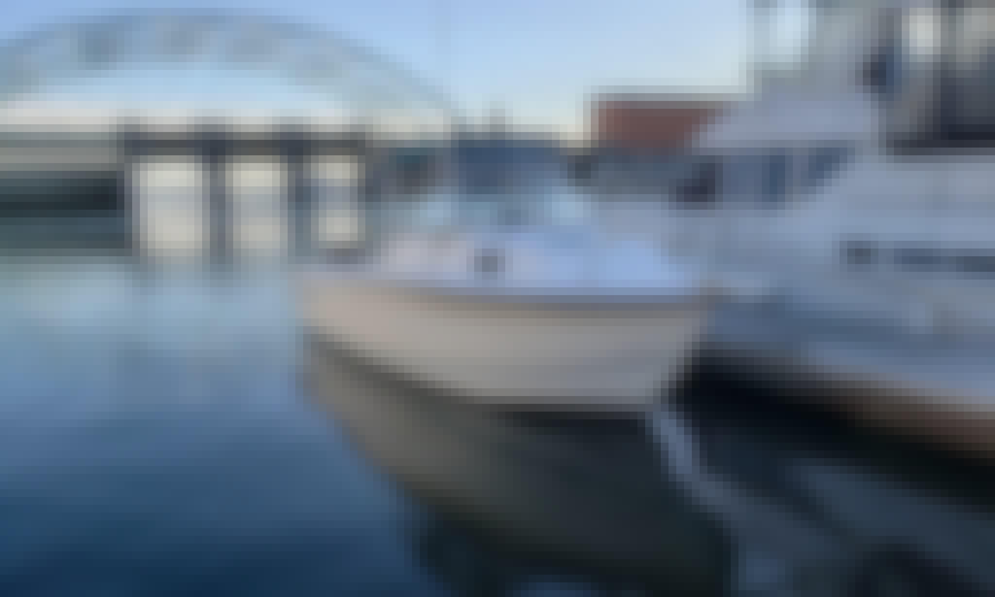 Adventure Cruise on Upper Bay onboard 23' Sea Pro Walk Around Cuddy Cabin