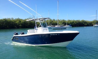 Bottom Fishing Trip onboard 23' Mako Center Console in Lajas, Puerto Rico