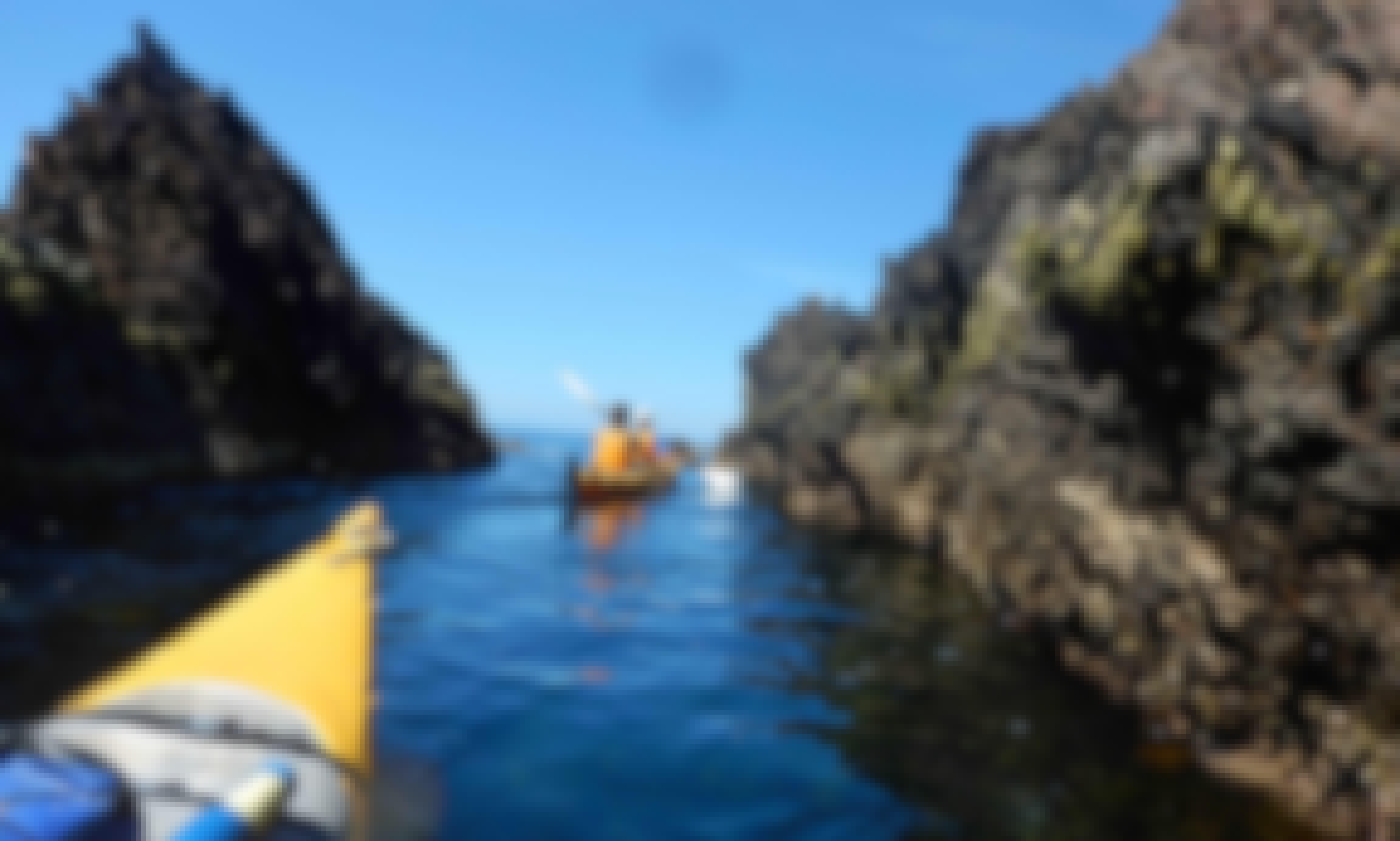 Half Day Sea Kayak Tours in Batemans Bay