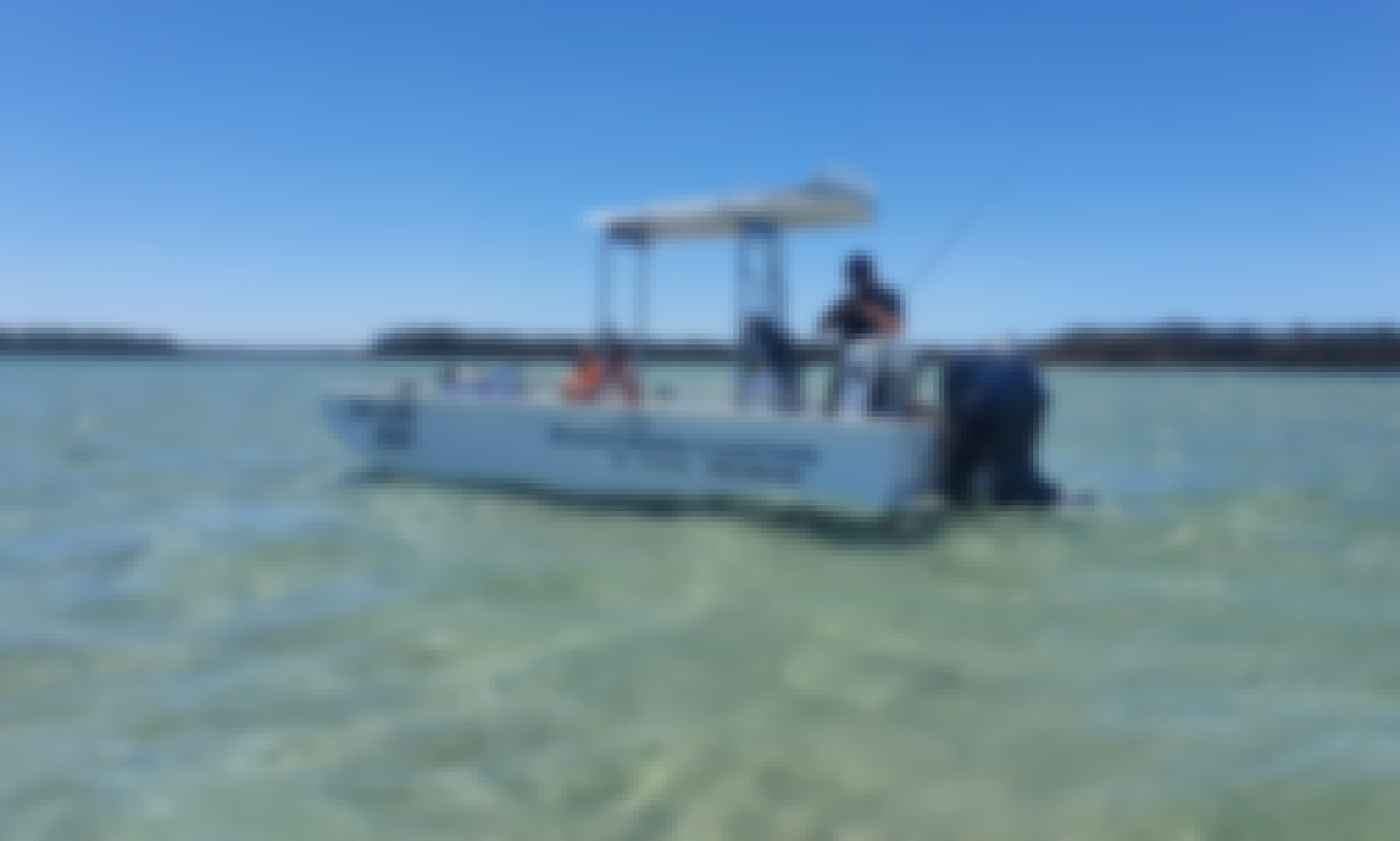 Forster/Tuncurry - Fishing/Crabbing Charters on Wallis Lake and Estuary