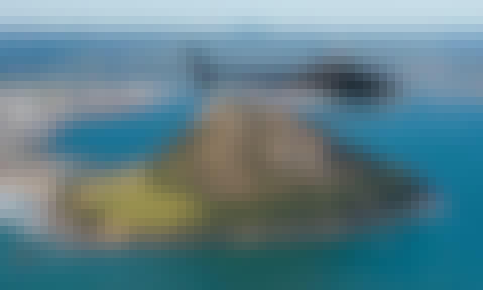3-Hours Tauranga Coastline Tour or  Fiordland Tour for 4 People