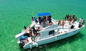 VIP Experience Cruises aboard Power Catamaran in Punta Cana