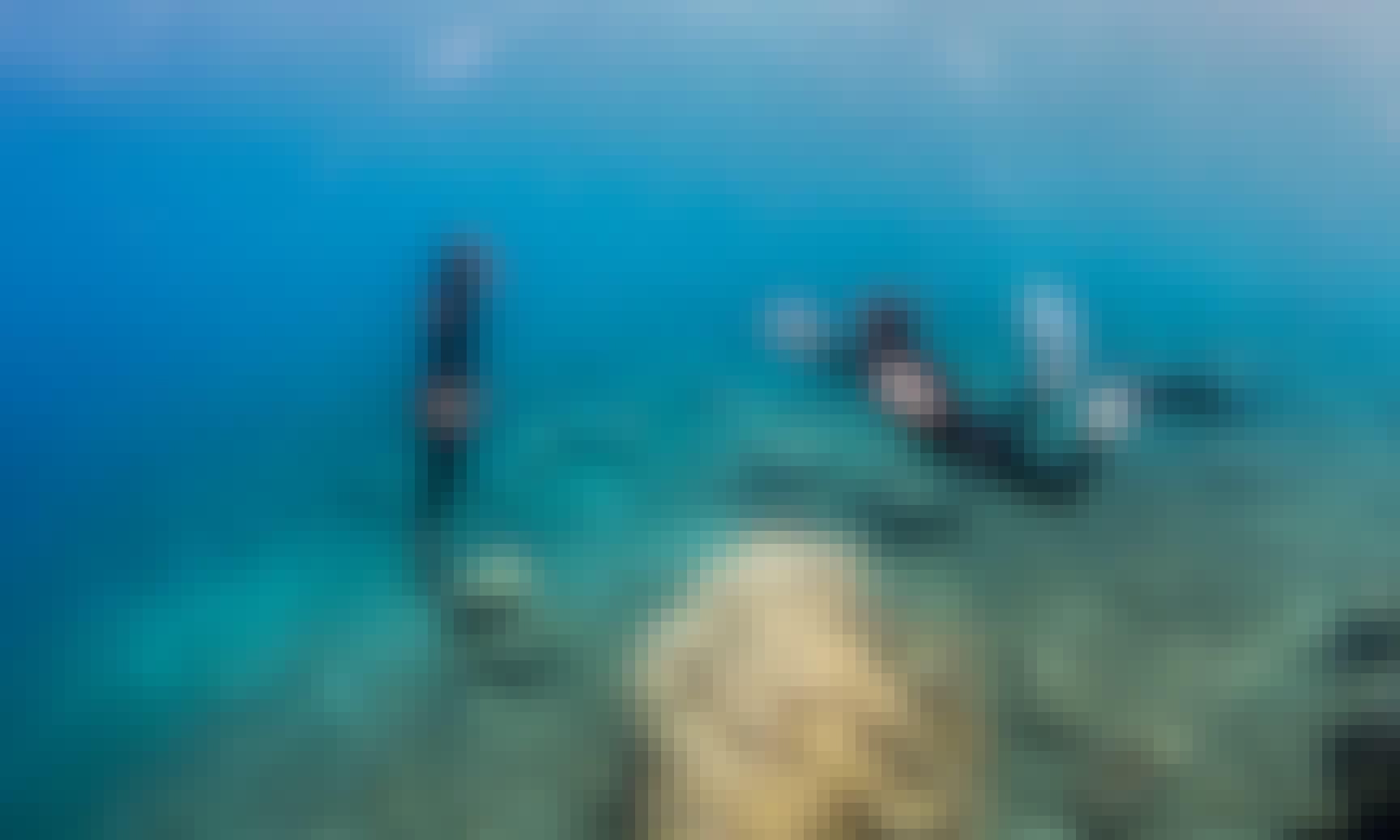 Learn Freediving in Bali, Indonesia! Book the PADI Basic Freediver Course!