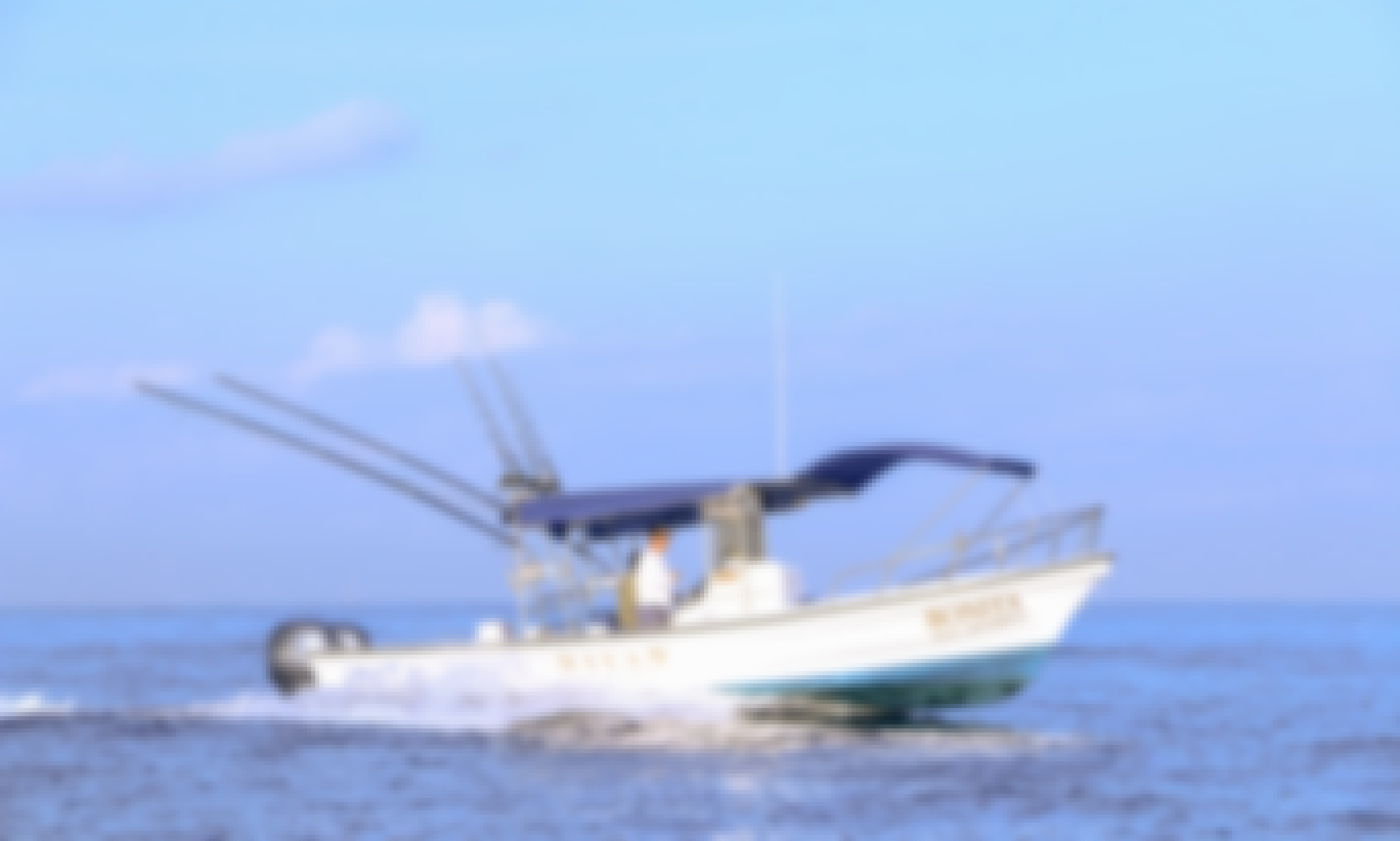 Fishing Boat Charter for 4 People in Puerto Vallarta, Mexico