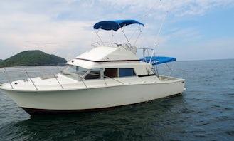 35ft Bertram Sport-fishing Charter