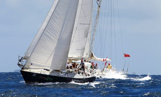 Expand Your Horizons With a Full Day Sail Trip With Us From Rodney Bay