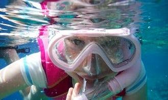 Amazing Snorkeling Adventure in Kailua-Kona Bay