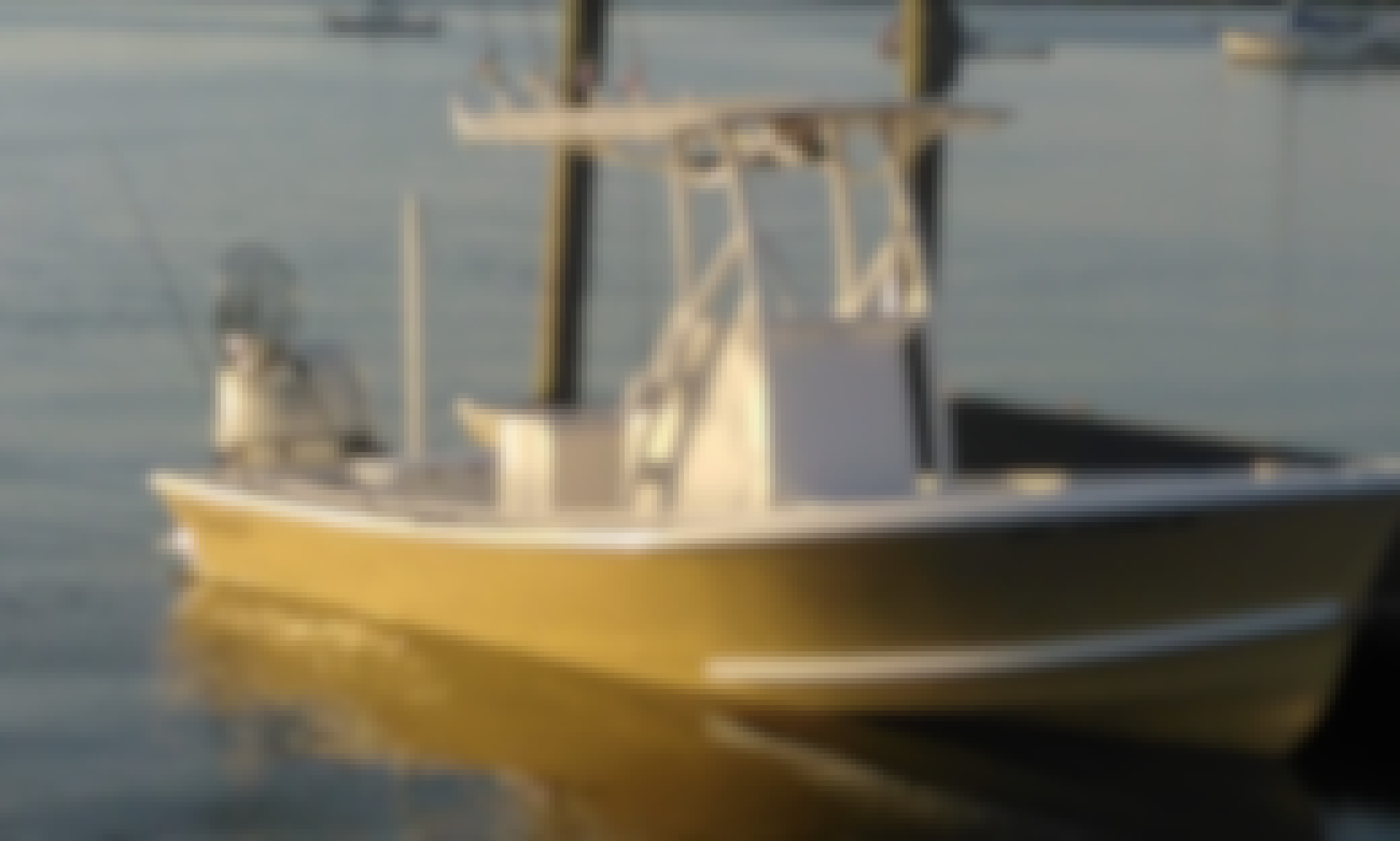 St Petersburg Inshore Fishing Charter with Capt. Ted
