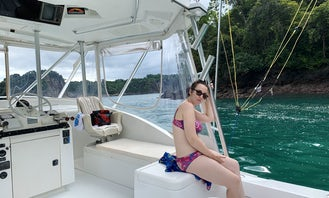 Private Cruises, Swimming & Whale Watching, Quepos