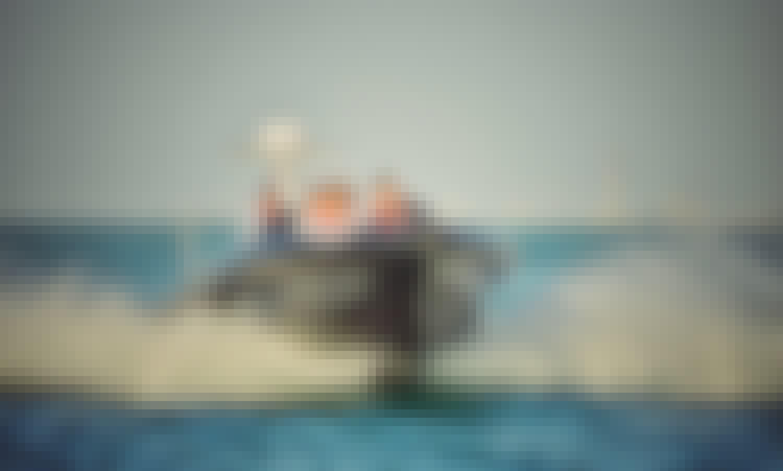 The Black Boats - Luxury, Fast and New in Dubai (Sightseeing) 60 min Marasi Canal tour, Burj Khalifa, Canal Waterfall