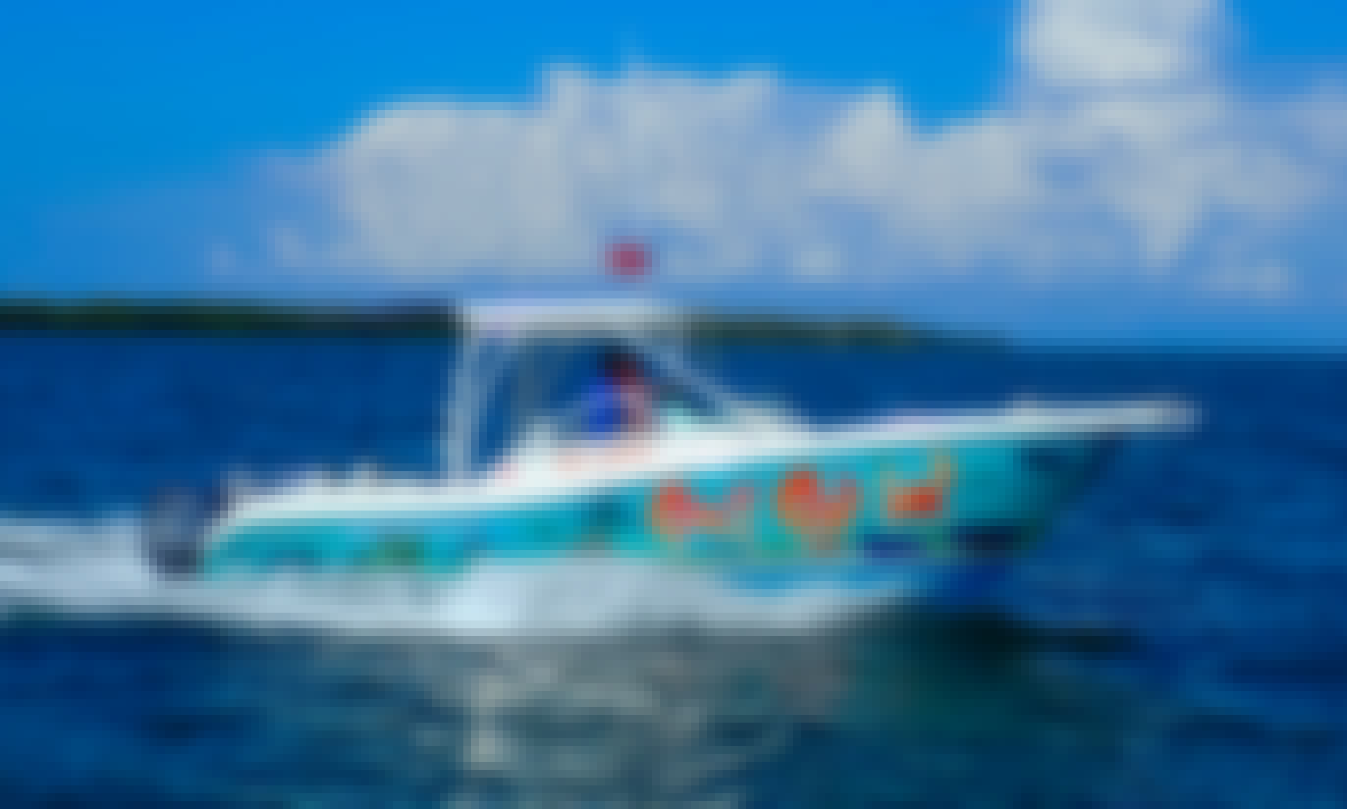 Book your private stingray, snorkel, starfish and bioluminescent adventure today!