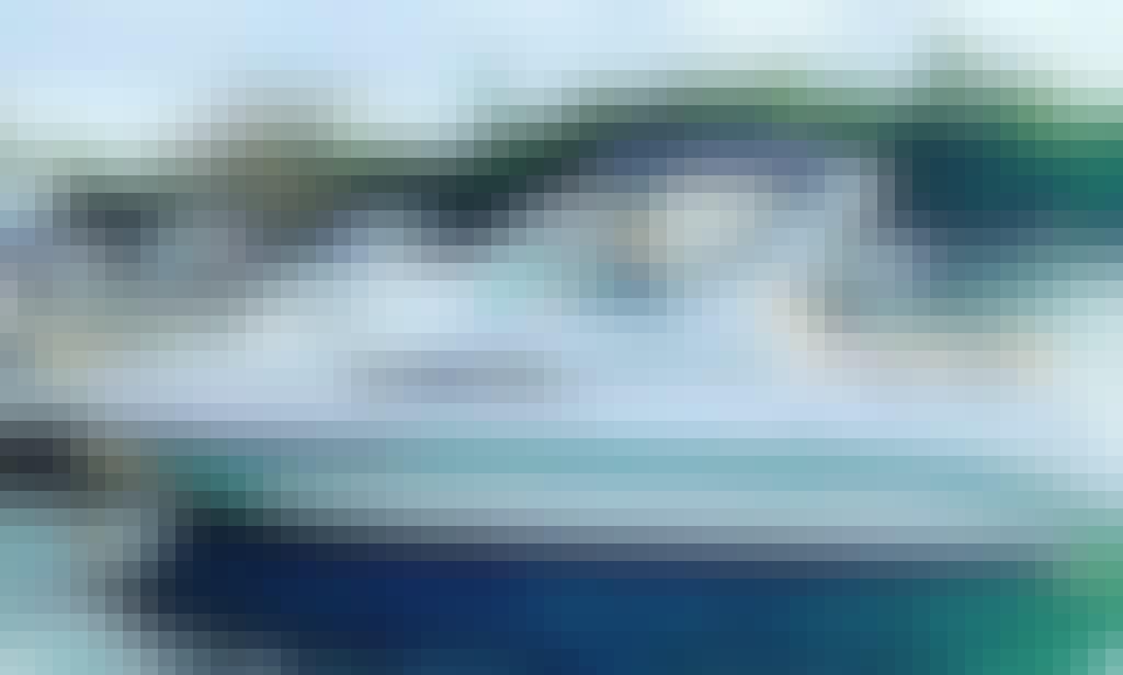 Sea Devil 33' Yacht Rental in Miami