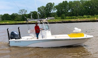 Walleye or Perch Charters, Lake Erie, Central Basin